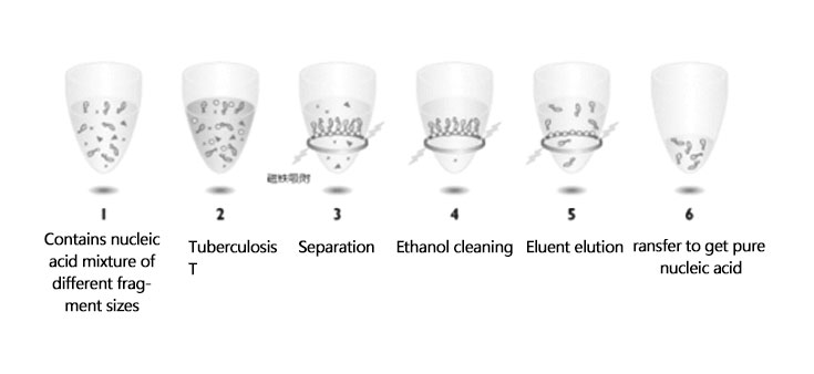 The general working principle of nucleic acid purification kit