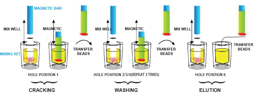 Working principle of nucleic acid extraction kit