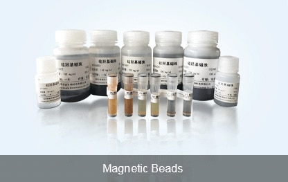 Magnetic Beads