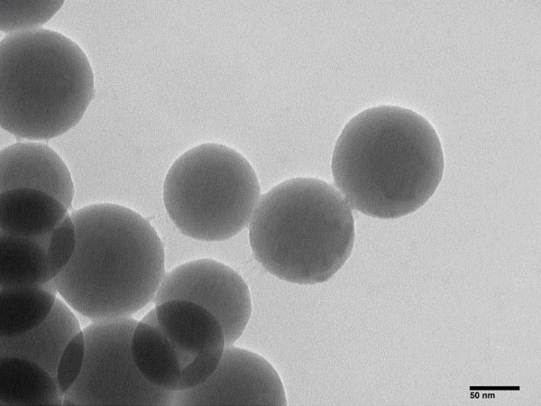Nucleic Acid Extraction Silicon-based Magnetic Beads