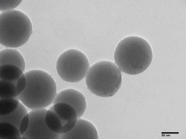 Perlas magnéticas a base de silicio para extracción de ácidos nucleicos